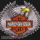 Нашивка Харлей Дэвидсон в крыльях орла